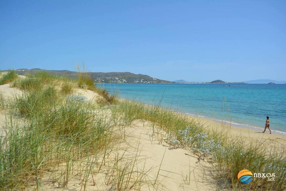 Walking Along Plaka Beach Naxos