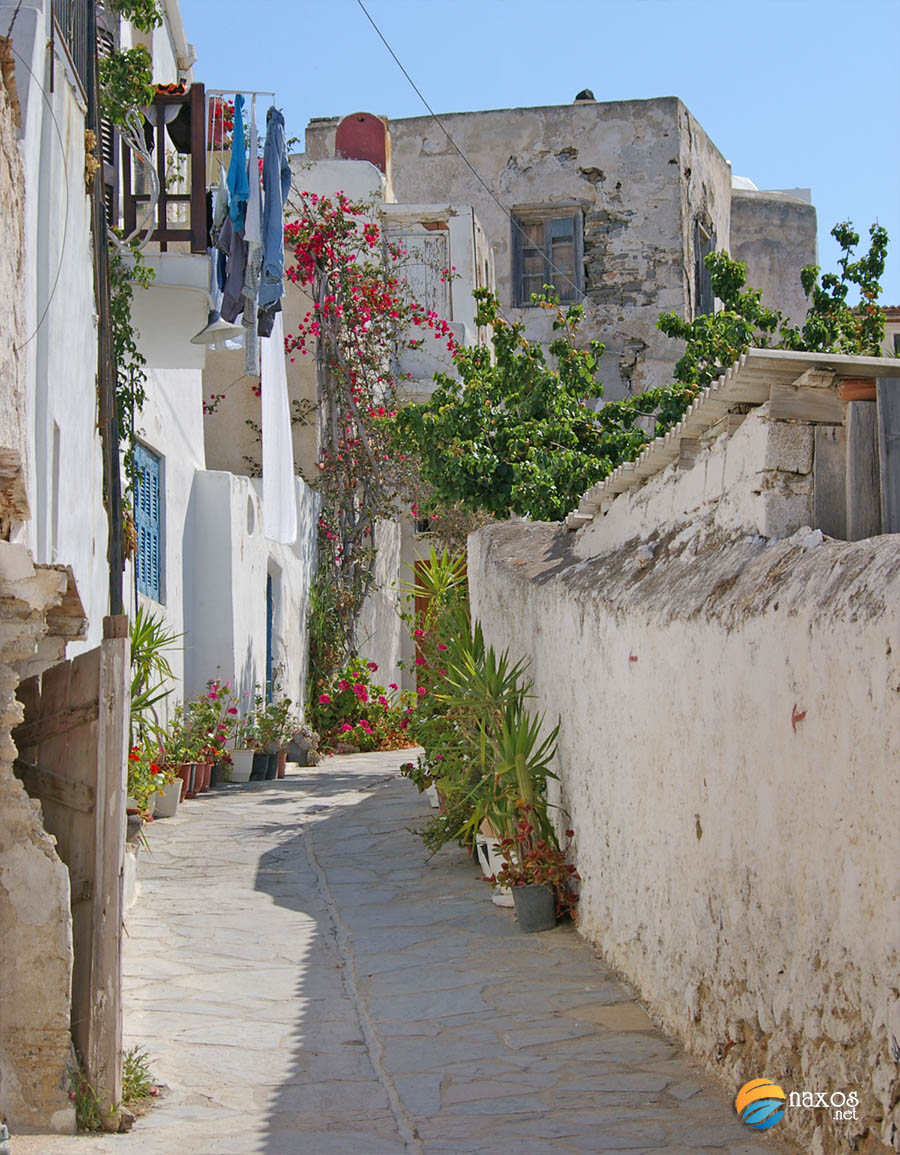 Discover the magic of Naxos