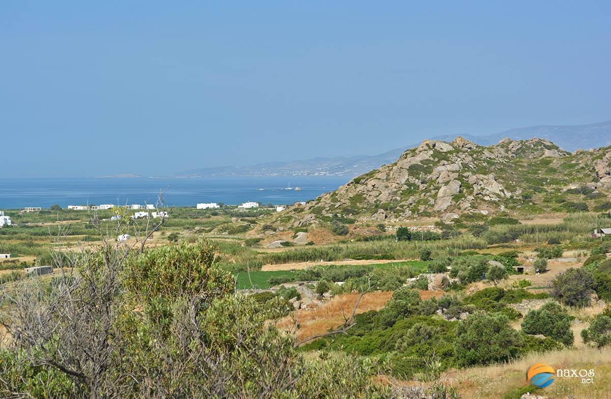 Naxos countryside with lush valleys of vineyards and olive groves