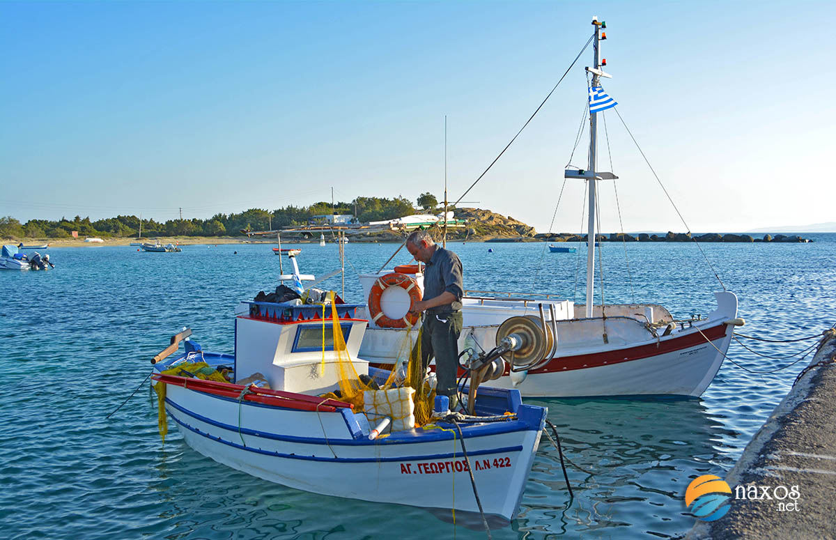 Fisherman at the port of Agia Anna village