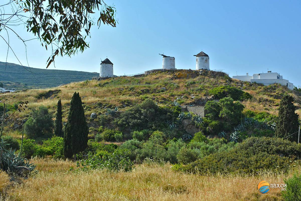 Closer view of the three windmills in Tripodes, Naxos